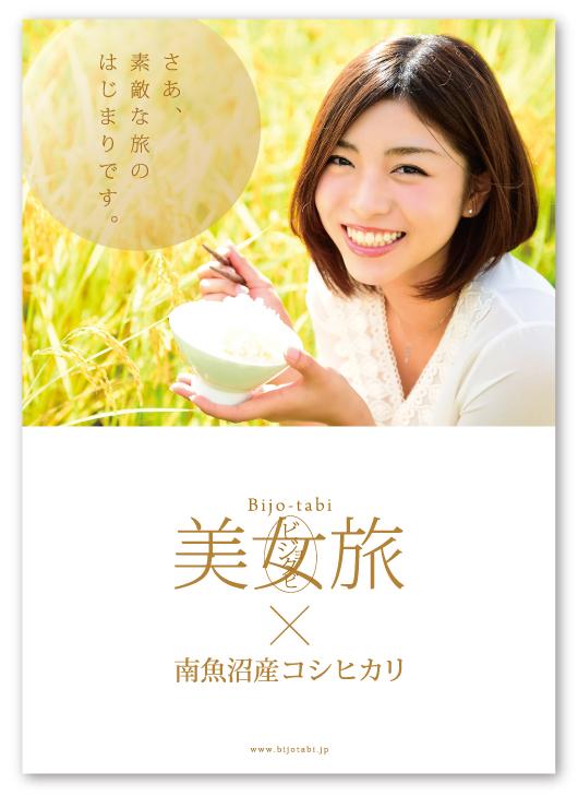 koshihikari-1p