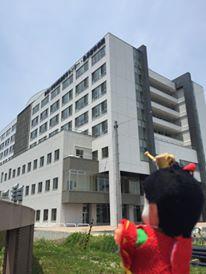 基幹病院5